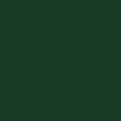 Linoleum_conifer_NR4174_500x500px