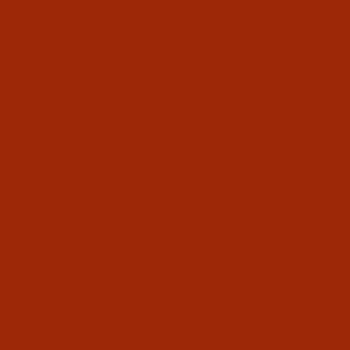 Linoleum_salsa_NR4164_500x500px